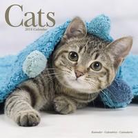 Cats Wall Calendar 2018 by Avonside