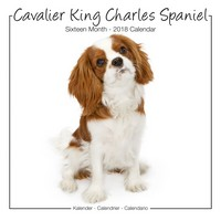 Cavalier King Charles Studio Range Wall Calendar 2018 by Avonside