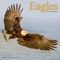 Eagles Wall Calendar 2018 by Avonside
