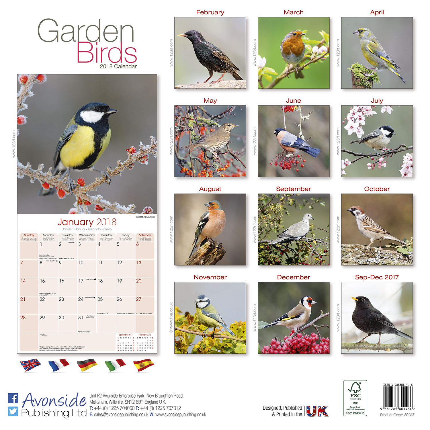 Garden birds calendar 2018 pet prints inc for Gardening 2018 calendar