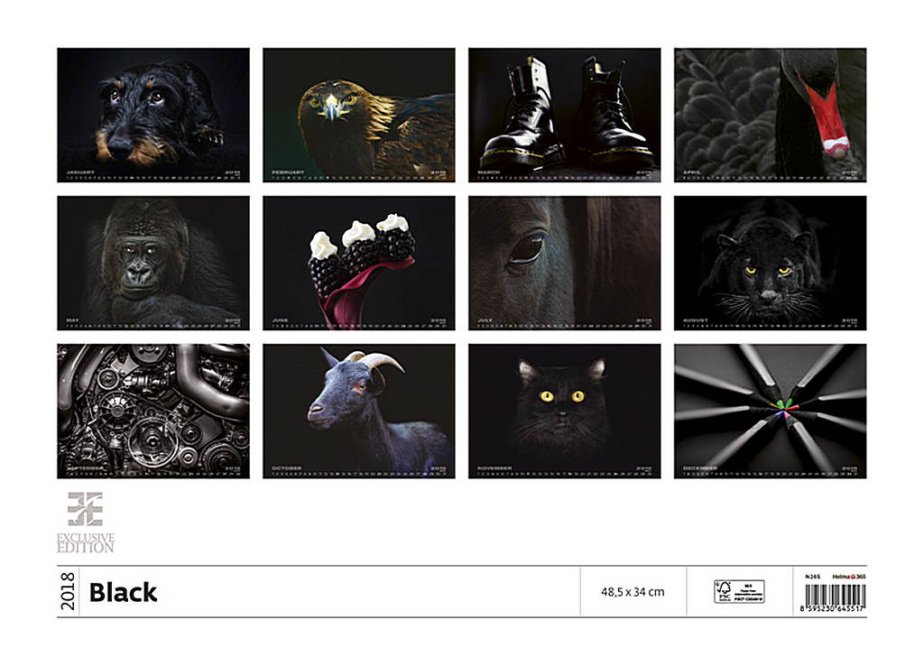 Black Wall Calendar 2018 by Helma back 8595230645517