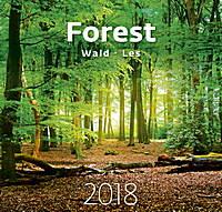 Forest Wall Calendar 2018 by Helma 8595230644350