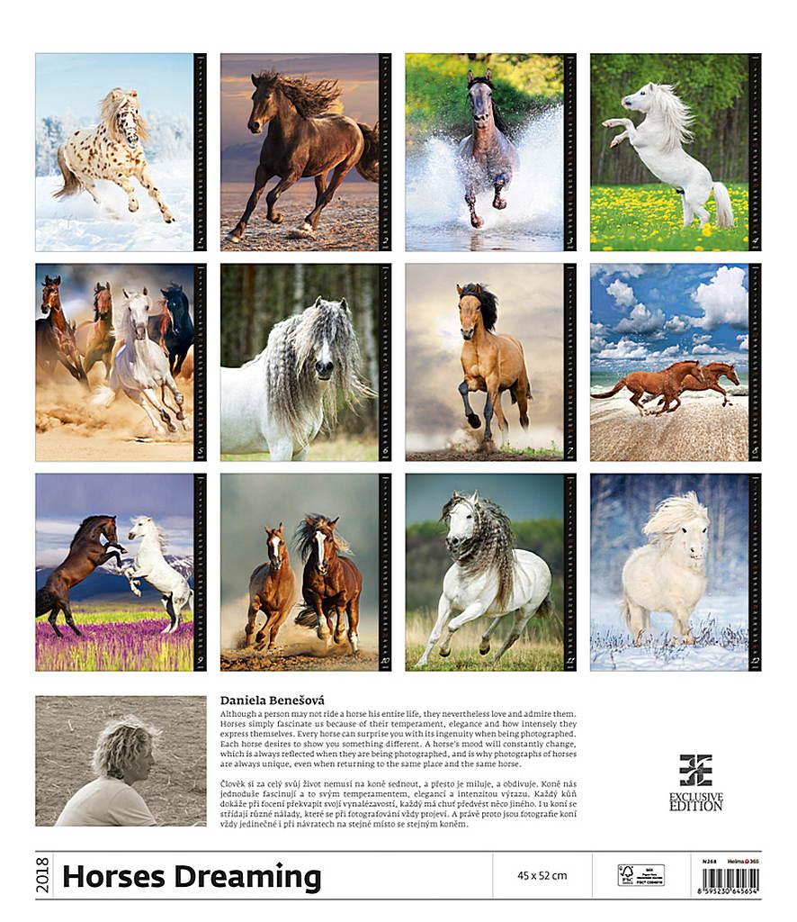 Horses Dreaming Wall Calendar 2018 by Helma back 8595230645654
