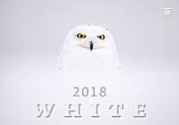 White Wall Calendar 2018 by Helma