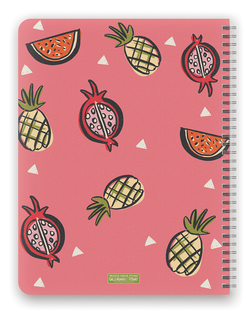 Be Awesome Today Extra Large Flexi Planner 2018 by Orange Circle Studio back 9781682582503