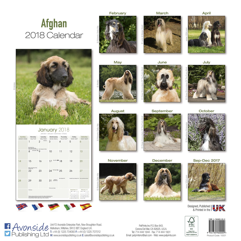 Calendar Dogs : Afghan calendar dog breed calendars mega