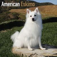 American Eskimo Wall Calendar 2018 by Avonside