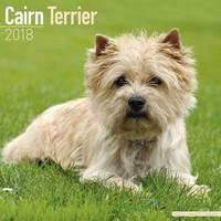 Cairn Terrier Wall Calendar 2018 by Avonside