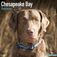 Chesapeake Bay Ret Wall Calendar 2018 by Avonside