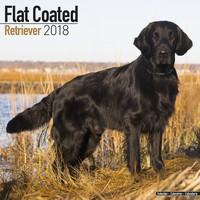 Flatcoated Retriever Wall Calendar 2018 by Avonside