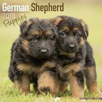 German Shepherd Puppies Wall Calendar 2018 by Avonside