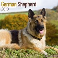 German Shepherd Wall Calendar 2018 by Avonside
