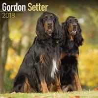 Gordon Setter Wall Calendar 2018 by Avonside