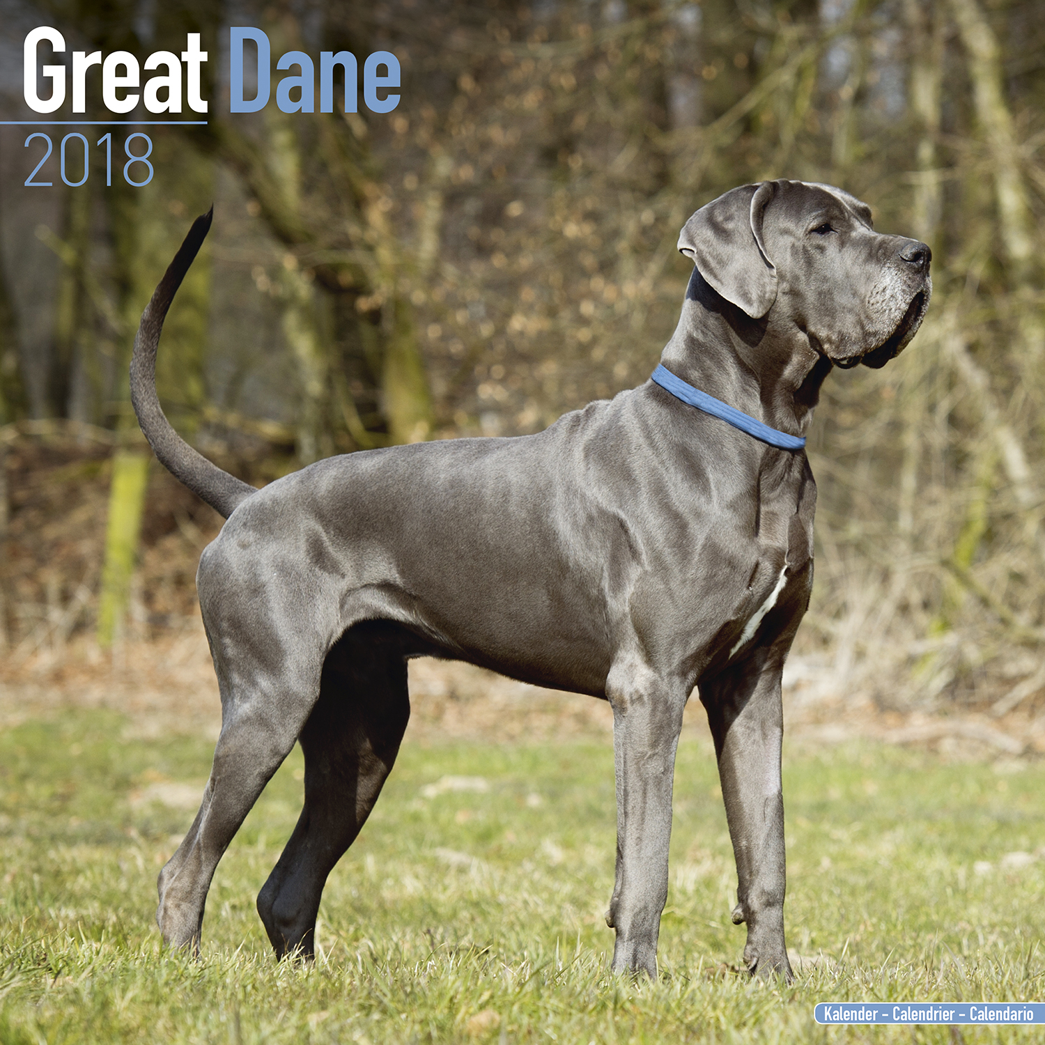 Great Dane (Euro) Calendar 10043-18 | Great Dane (Euro ...