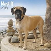 Mastiff Wall Calendar 2018 by Avonside