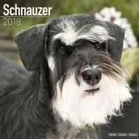 Schnauzer (Euro) Wall Calendar 2018 by Avonside