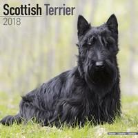 Scottish Terrier Wall Calendar 2018 by Avonside