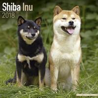 Shiba Inu Wall Calendar 2018 by Avonside