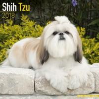 Shih Tzu Wall Calendar 2018 by Avonside