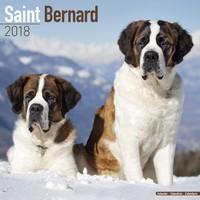 St Bernard Wall Calendar 2018 by Avonside