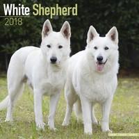 White Shepherd Wall Calendar 2018 by Avonside
