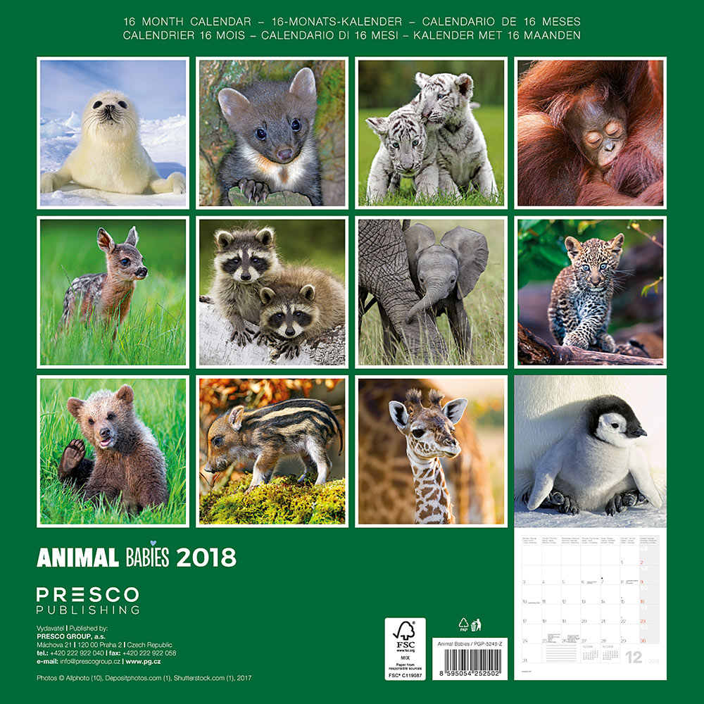 Animal Babies Calendar 2018 by Presco Group back 8595054252502