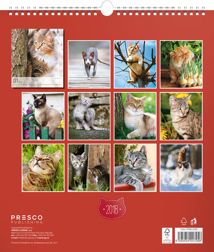 Cats Calendar 2018 by Presco Group back 8595054247256