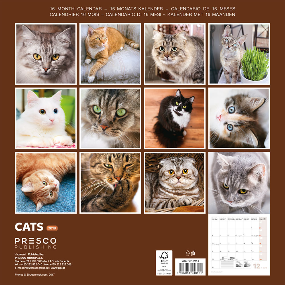 Cats Wall Calendar 2018 by Presco Group back 8595054248161