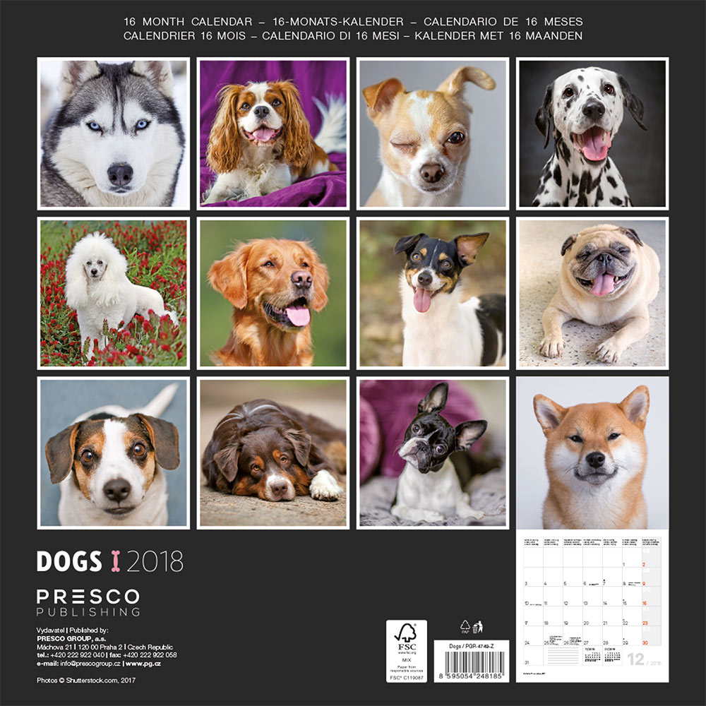 Dogs Wall Calendar 2018 by Presco Group back 8595054248185