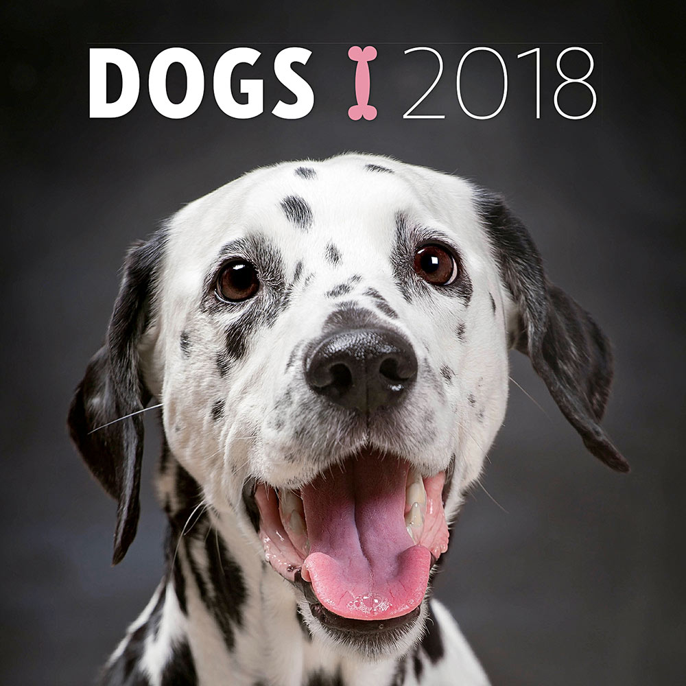 Dogs Wall Calendar 2018 by Presco Group 8595054248185