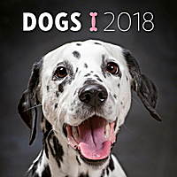 Dogs Wall Calendar 2018 by Presco Group