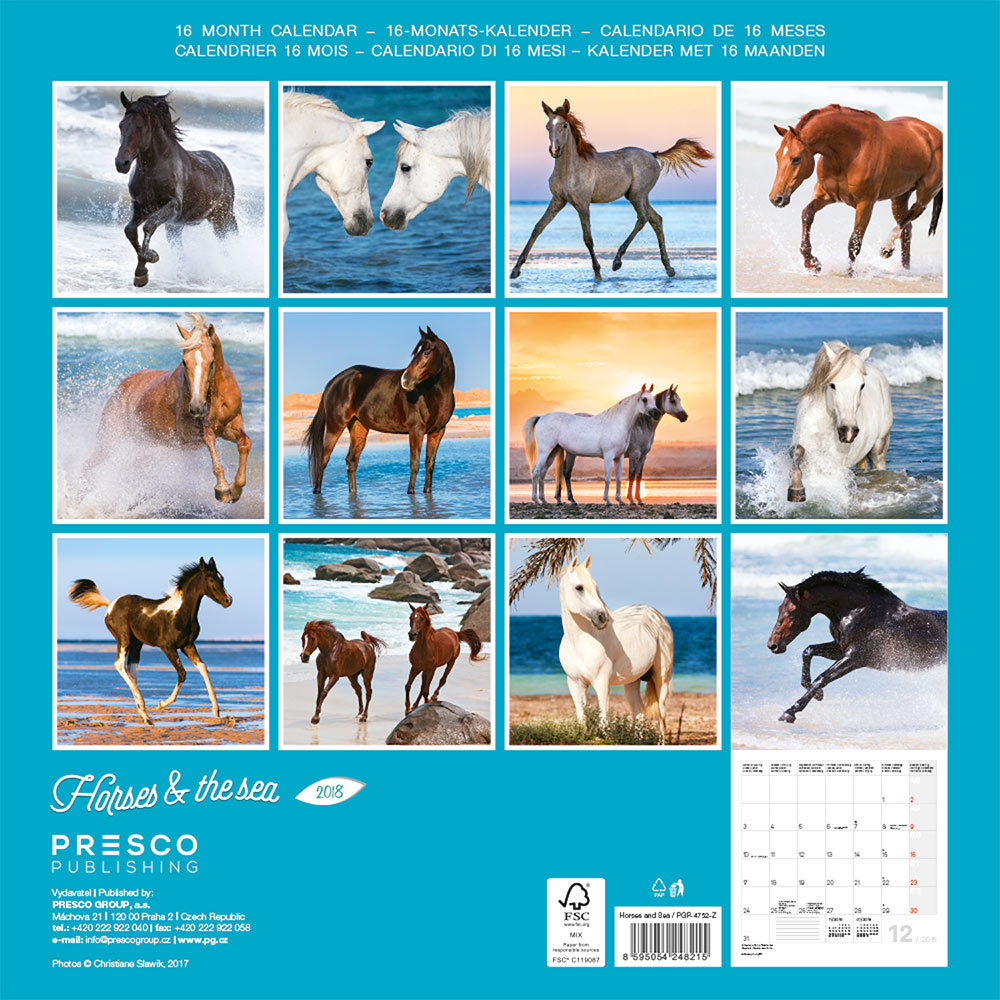 Horses and the Sea by Christiane Slawik Calendar 2018 by Presco Group back 8595054248215