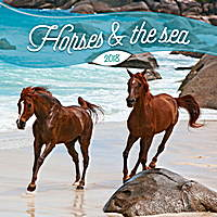 Horses and the Sea by Christiane Slawik Calendar 2018 by Presco Group