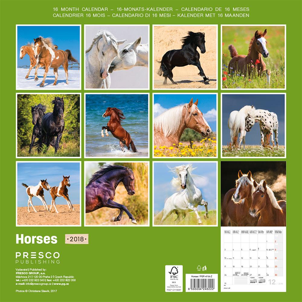 Horses by Christiane Slawik Calendar 2018 by Presco Group back 8595054248222