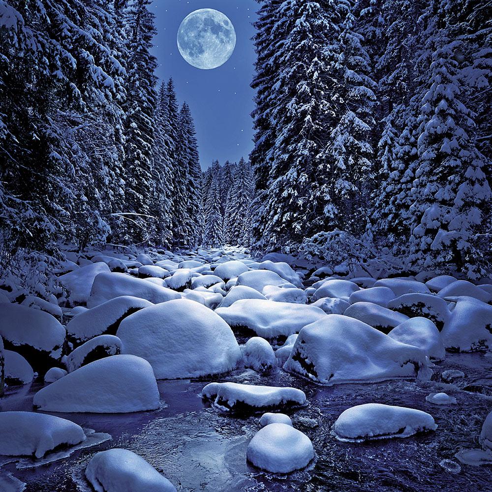 Moon Calendar 2018 by Presco Group inside 8595054250942
