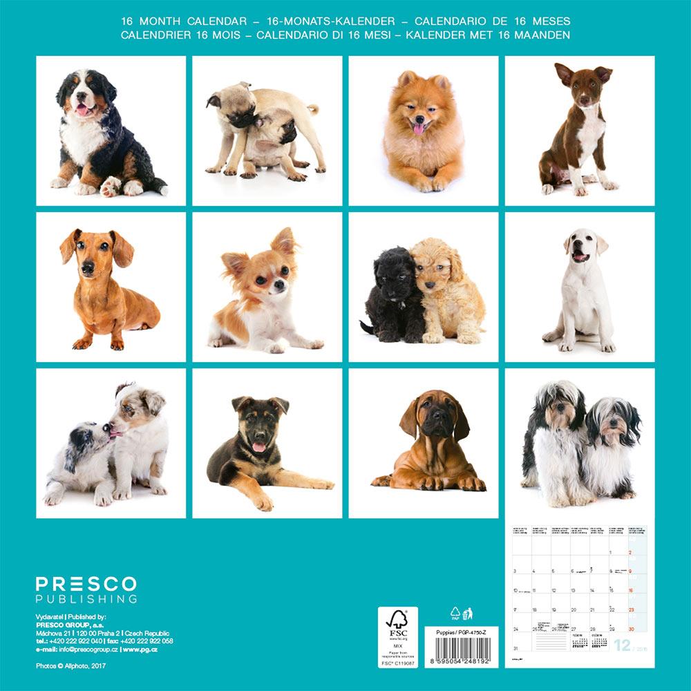 Puppies Calendar 2018 by Presco Group back 8595054248192