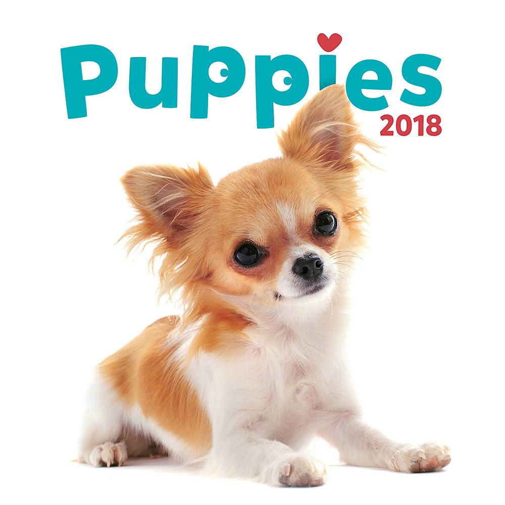 Puppies Calendar 2018 by Presco Group 8595054248192