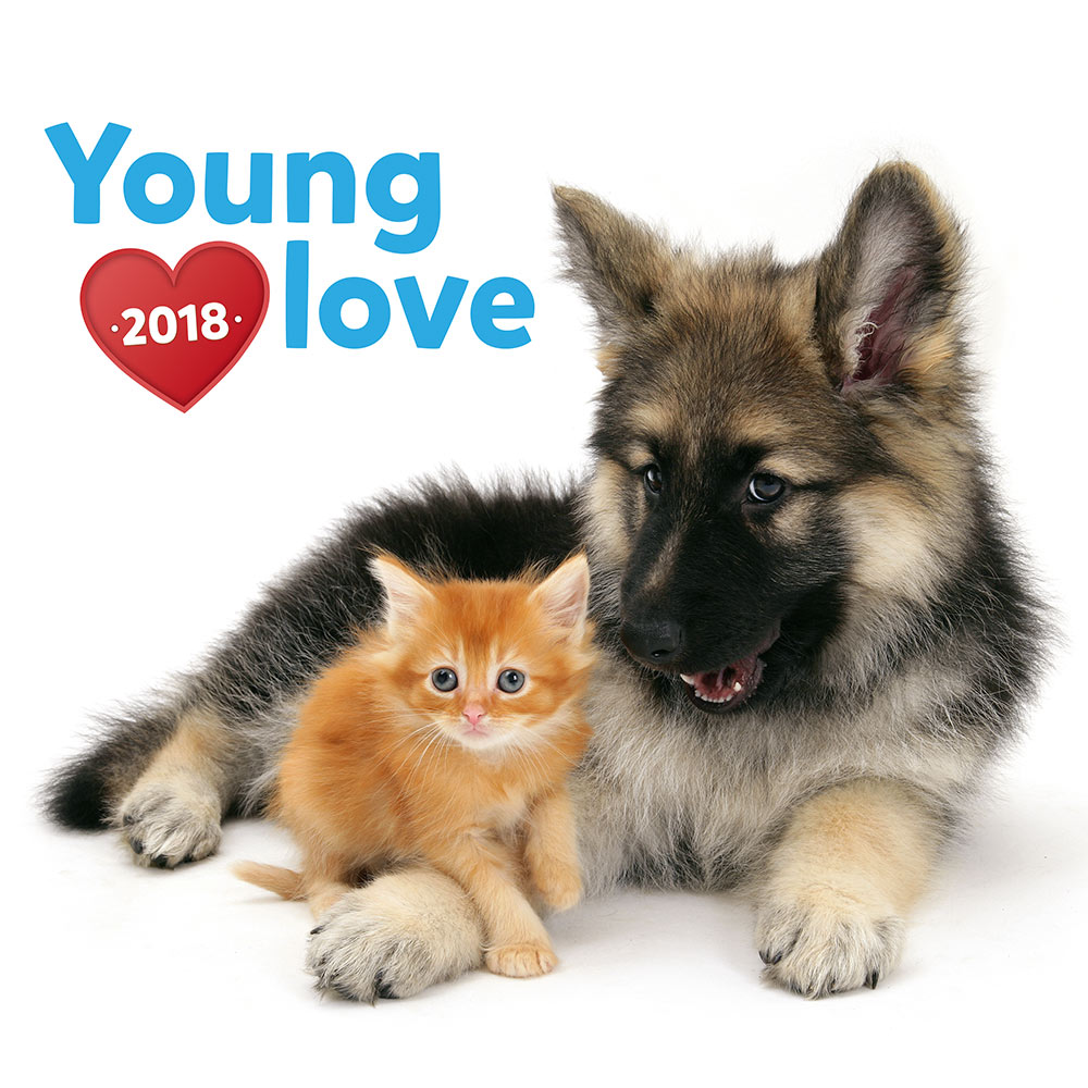 Young Love Kittens and Puppies Calendar 2018 by Presco Group 8595054248208
