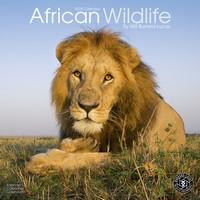 African Wildlife Wall Calendar 2018 by Avonside
