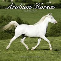 Arabian Horses Wall Calendar 2018 by Avonside