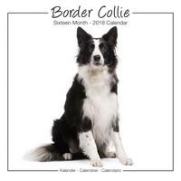 Border Collie Studio Range Wall Calendar 2018 by Avonside