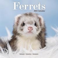 Ferrets Wall Calendar 2018 by Avonside