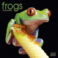 Frogs Wall Calendar 2018 by Avonside