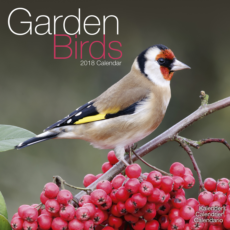 Secret Garden: Garden Birds Calendar 2018