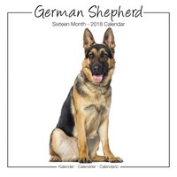 German Shepherds Studio Range Wall Calendar 2018 by Avonside