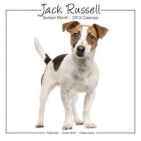 Jack Russell Studio Range Wall Calendar 2018 by Avonside