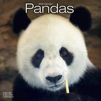 Pandas Wall Calendar 2018 by Avonside