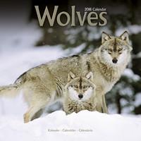 Wolves Wall Calendar 2018 by Avonside