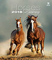 Horses Dreaming Wall Calendar 2018 by Helma