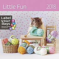 Little Fun Wall Calendar 2018 by Helma
